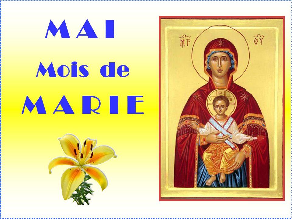 .. Chers confrères, parents et amis, À loccasion du mois de mai, voici un diaporama sur Marie. Prends le temps de le lire. Je te conseille de le révis