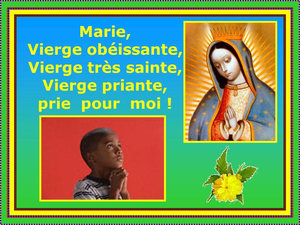 Vierge Marie, Avocate des âmes du purgatoire, prie pour lâme de nos défunts.