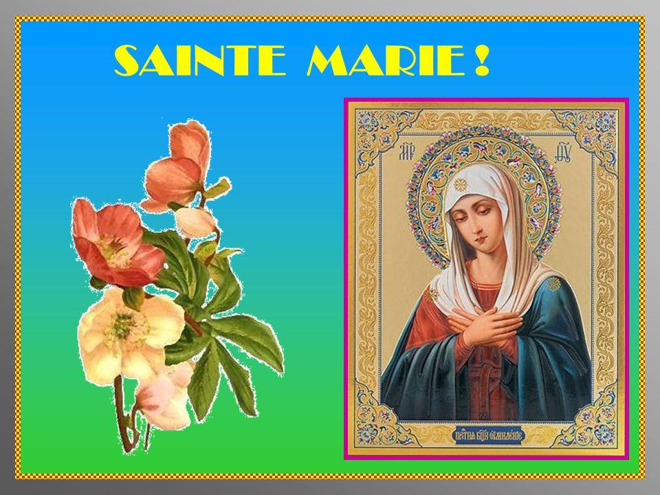 SAINTE MARIE !