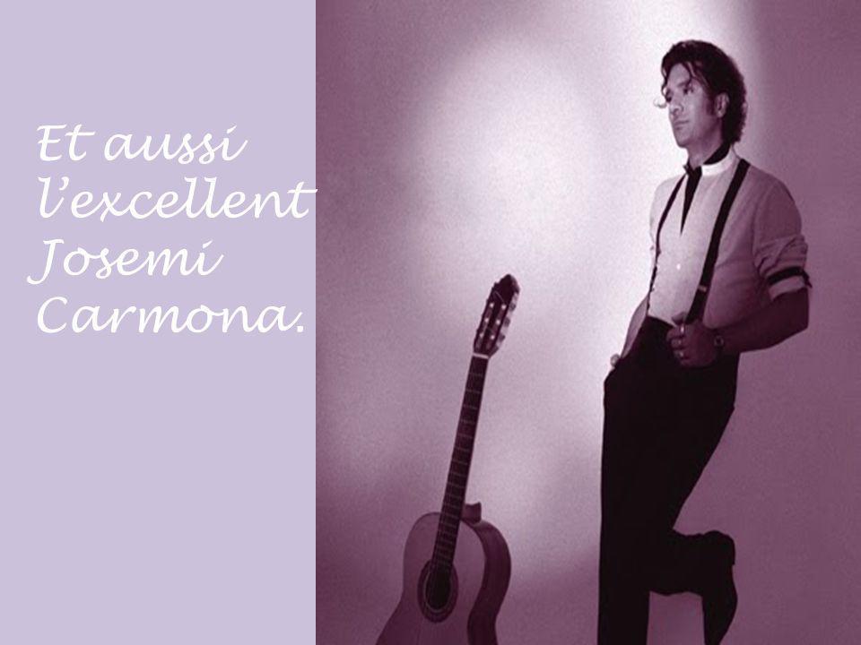 Parmi les meilleurs guitaristes du flamenco il y a, entre autres, le célèbre Paco De lucia