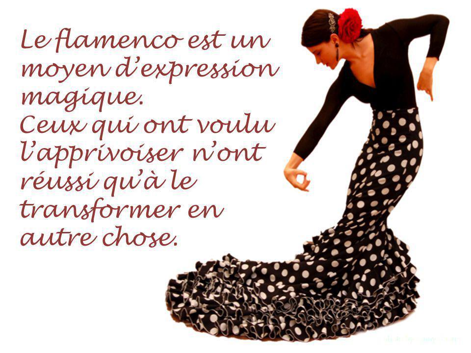 Le flamenco est un moyen dexpression magique.