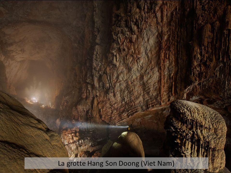 La grotte Hang Son Doong (Viet Nam)