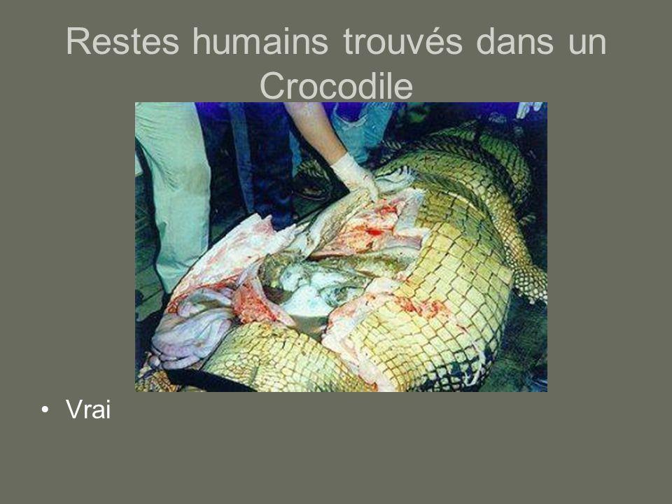 Restes humains trouvés dans un Crocodile Vrai