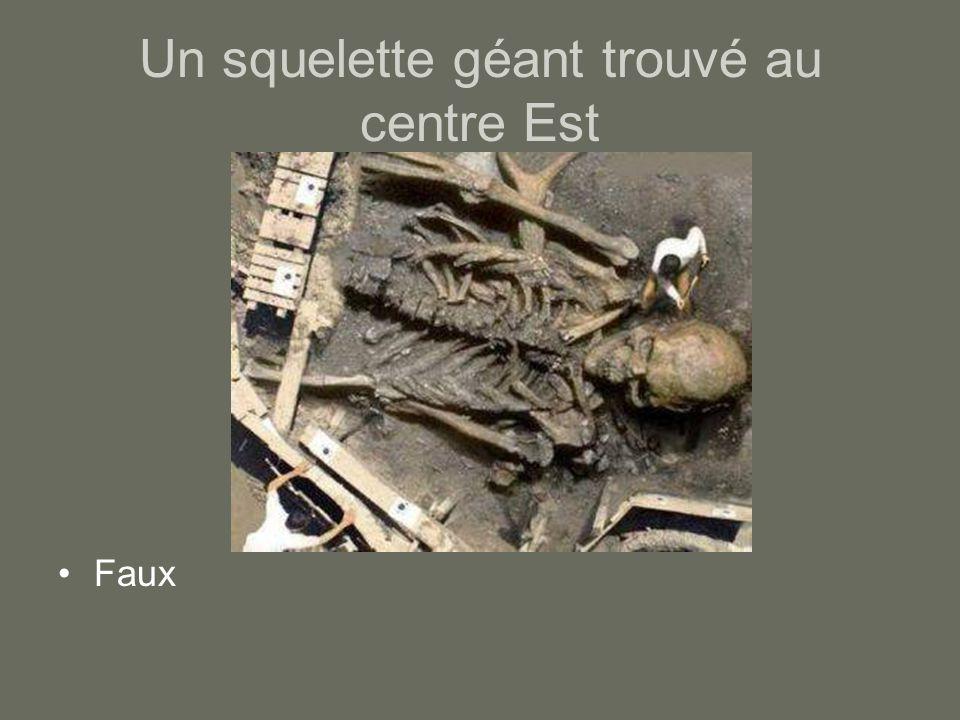 Un squelette géant trouvé au centre Est Faux