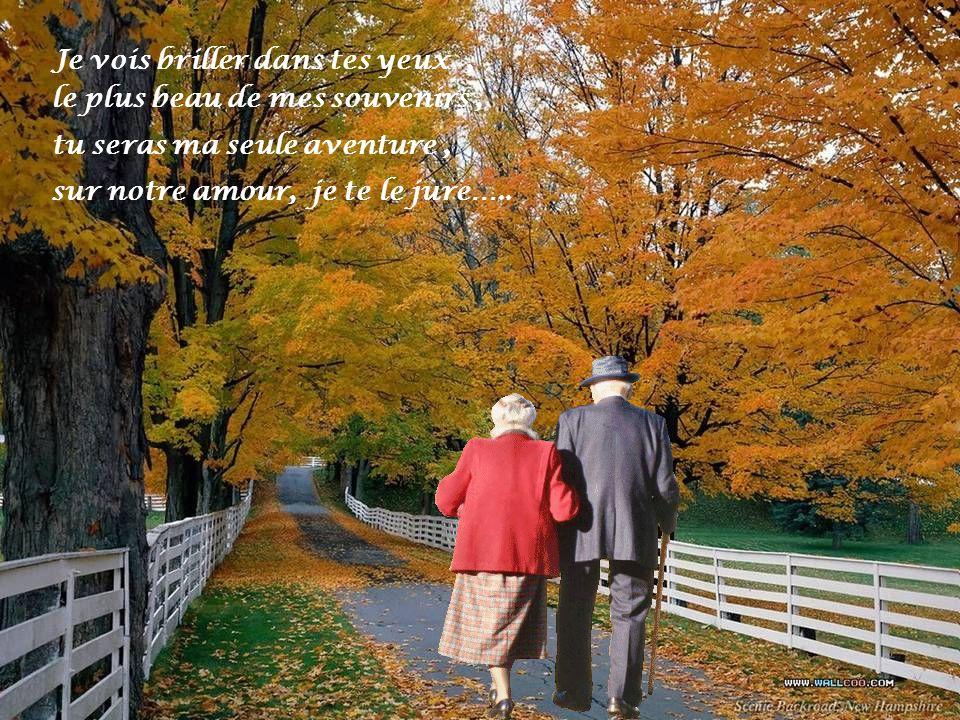 Ce soir fais-moi danser, Fais-moi revivre cette amitié, Comme loiseau se sentir libre Je voudrais menvoler…