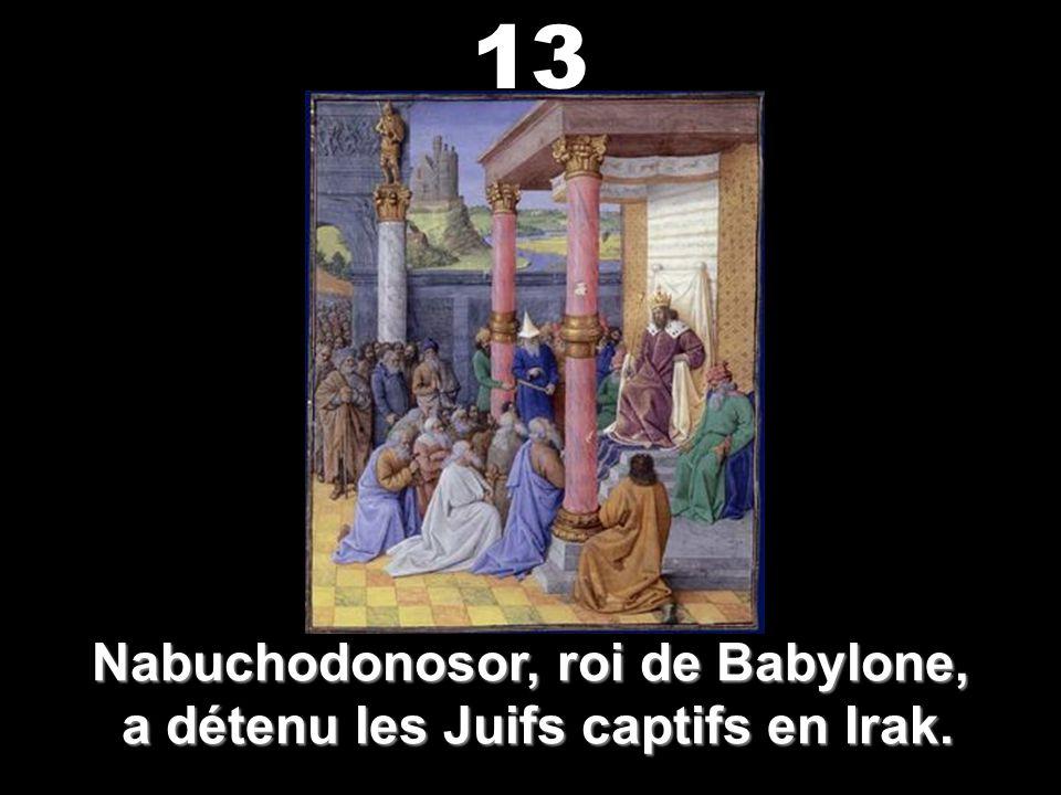 Balthazar, roi de Babylone, a vu les