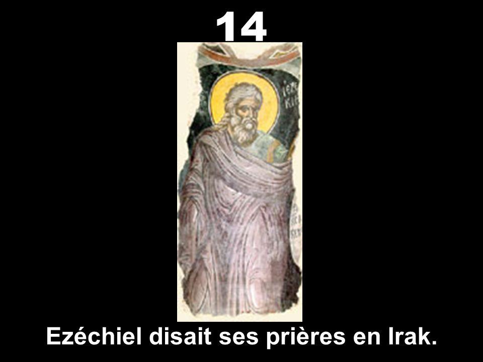 Nabuchodonosor, roi de Babylone, a détenu les Juifs captifs en Irak. a détenu les Juifs captifs en Irak. 13