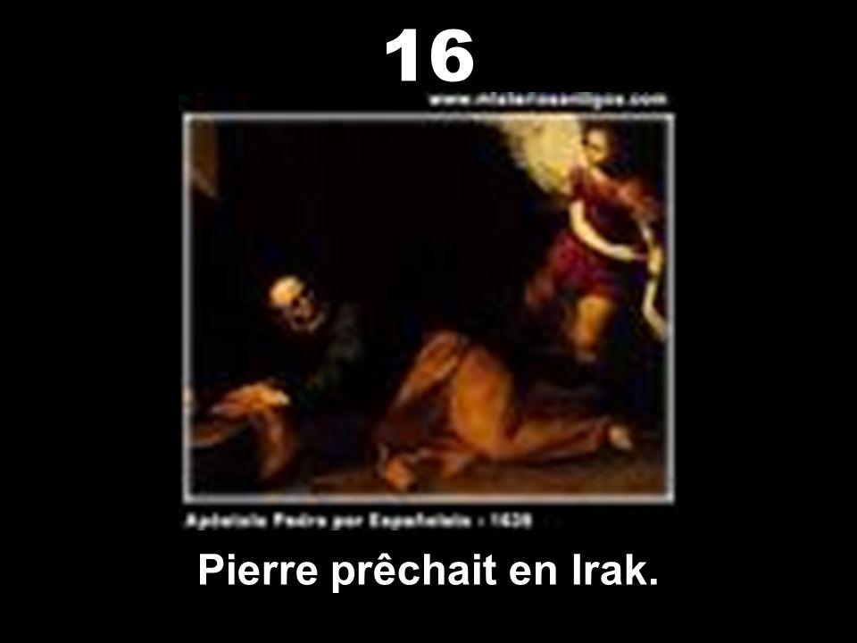 Les rois mages étaient Irakiens. 15