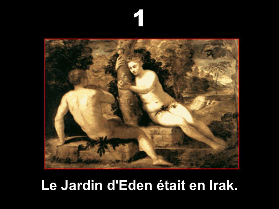 Saviez-vous que les guerres en Irak n'ont que des vues sur le pétrole ? Il y a de mémorables histoires et des mythes sur cette civilisation à découvri
