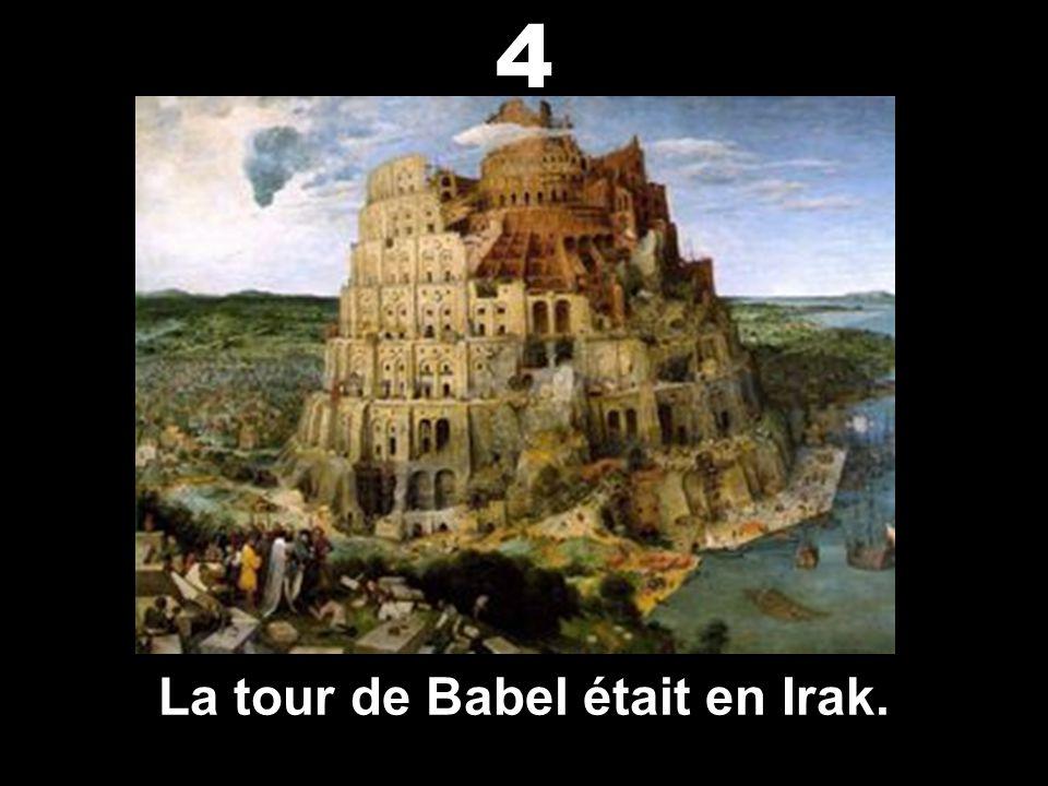 Noé a construit l'arche en Irak. 3