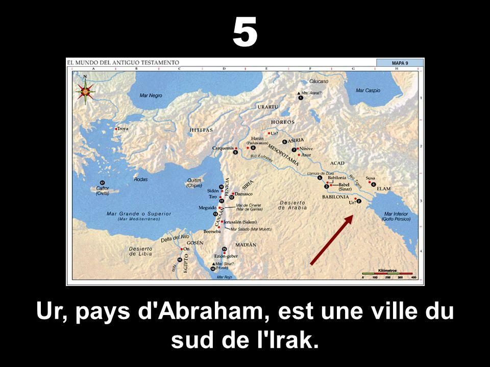 La tour de Babel était en Irak. 4