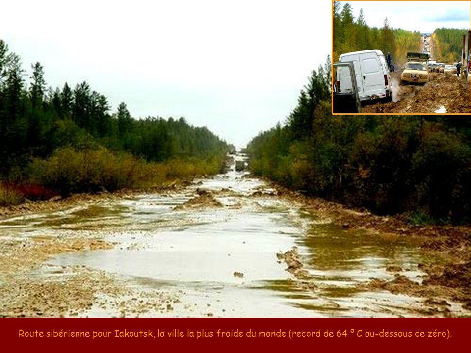 Route 17, dans le passage du comté de Beaufort en Caroline du Sud, USA. (fonte: Auto in the news, 3-mar-2010)