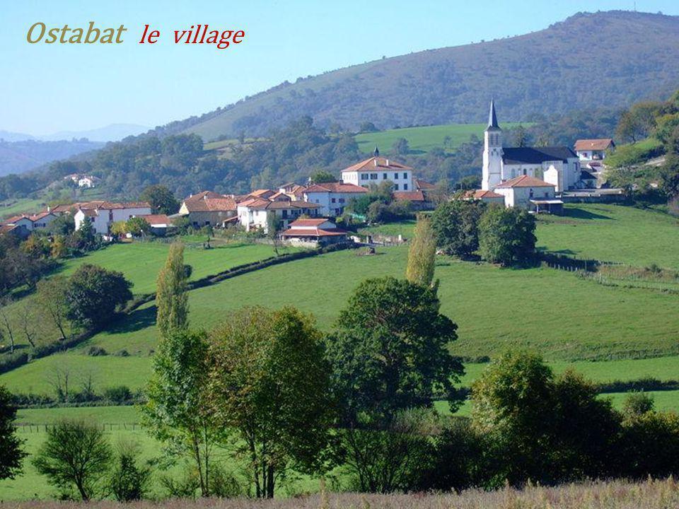 Le fronton adossé à. Léglise St-Jean-Baptiste Un Pottok, (À prononcer pottiok) petit cheval Basque Irissarry