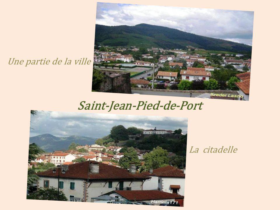 Saint-Jean-Pied-de-Port La Nive de Béhérobie