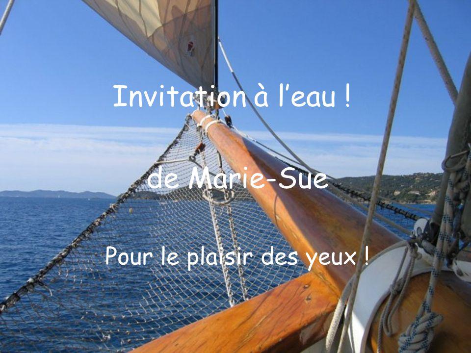 Invitation à leau ! de Marie-Sue Pour le plaisir des yeux !