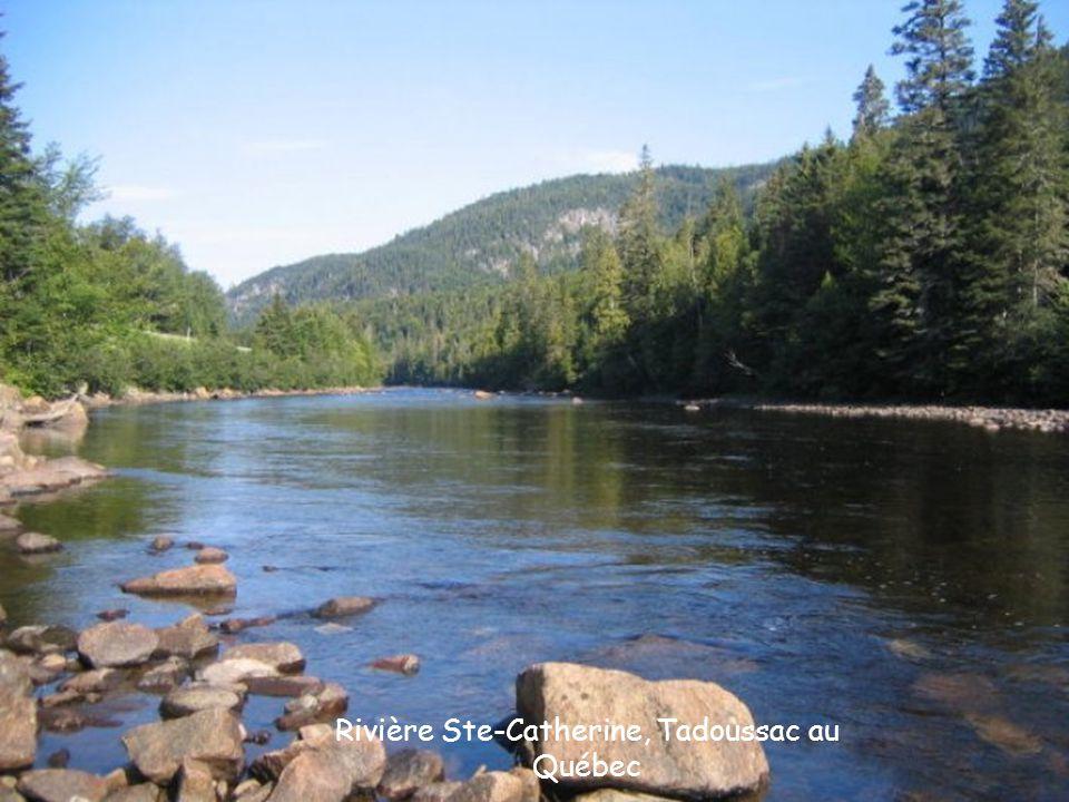 Rivière Ste-Catherine, Tadoussac au Québec