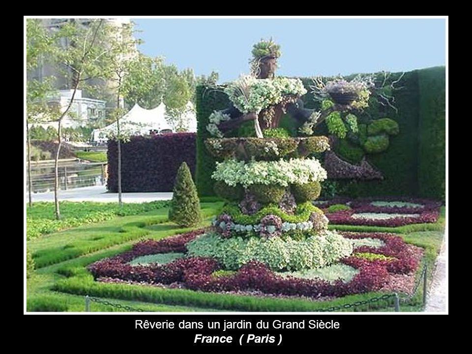 Les couleurs de la paix France ( Angers )