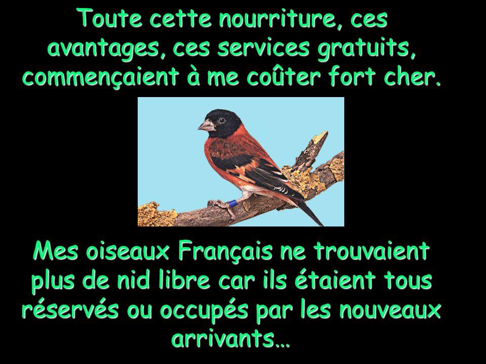 Des oiseaux étrangers, de plus en plus nombreux, et de plus en plus exigeants, sont venus brandir des drapeaux dautres couleurs que le notre, crier et hurler dans le patio pour demander plus de droits et de libertés gratuites.