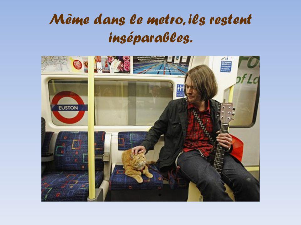 Le musicien des rues James Bowen et son chat Bob dans le métro de Londres.