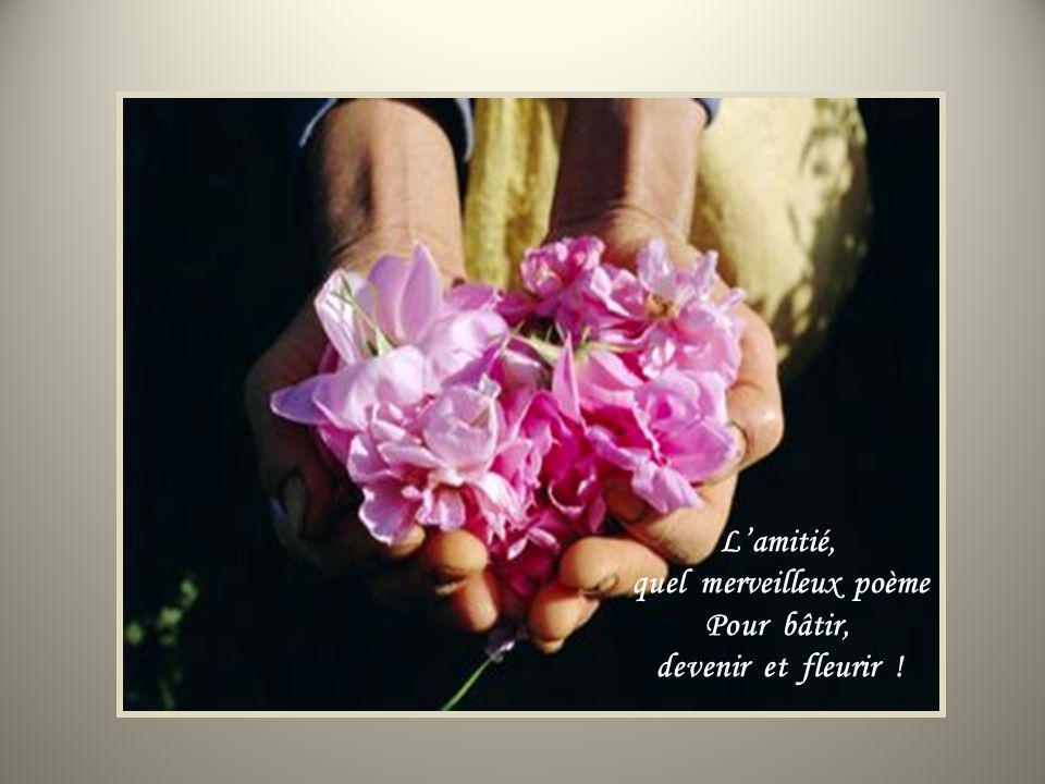 Lamitié fait sourdre une lumière, Enfouie au plus profond de soi.
