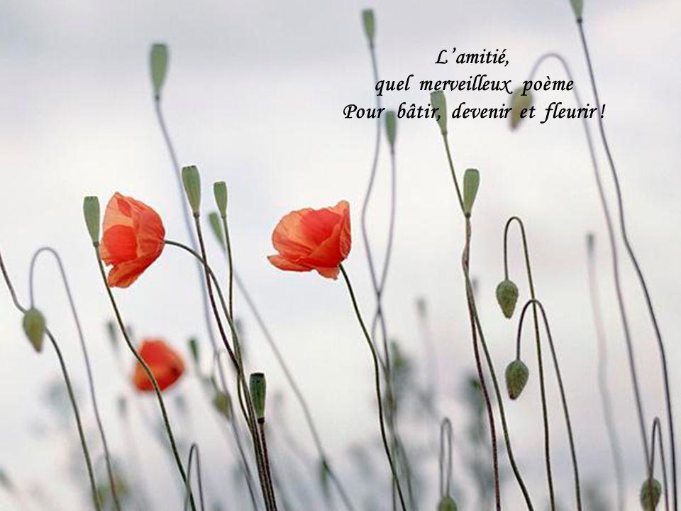 Lamitié, quel merveilleux poème Pour bâtir, devenir et fleurir !
