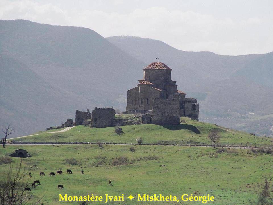 Monastère dAgios Nikolaos Anapavssas Grèce