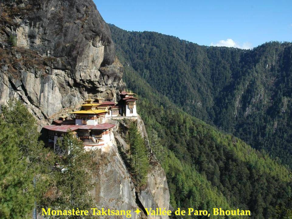 Monastère Taktsang Vallée de Paro, Bhoutan