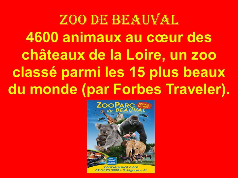 Zoo de beauval 4600 animaux au cœur des châteaux de la Loire, un zoo classé parmi les 15 plus beaux du monde (par Forbes Traveler).