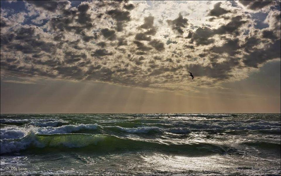 Toutes les mers du monde Chantent leur mélodie Tous les voiliers du monde Dansent comme des notes frêles Sur leur portée de vagues Les oiseaux sont de