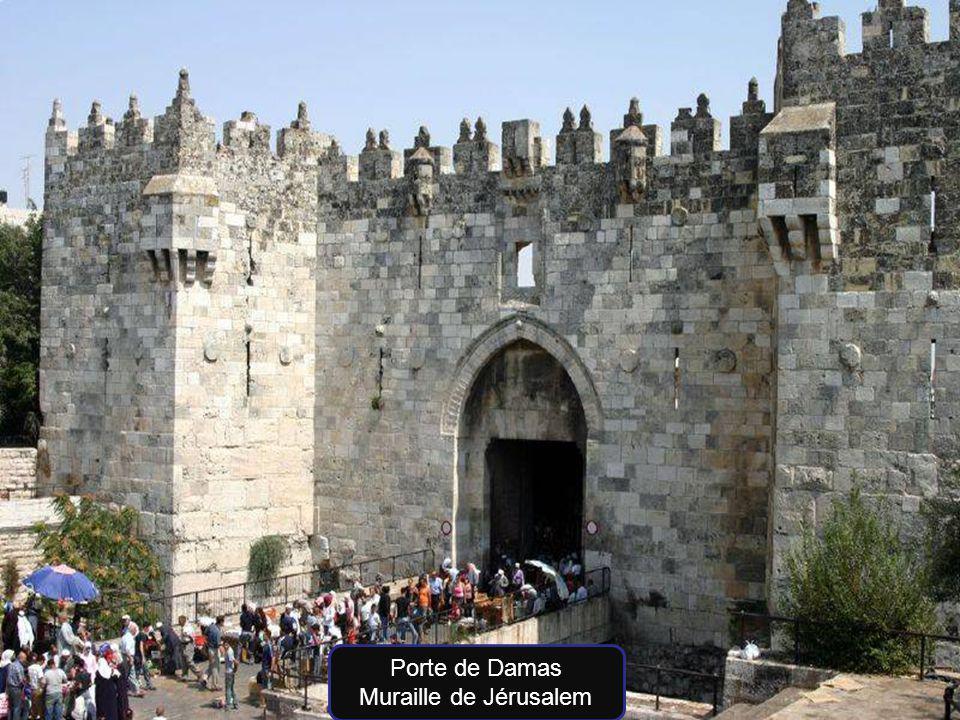 Porte de Damas Muraille de Jérusalem