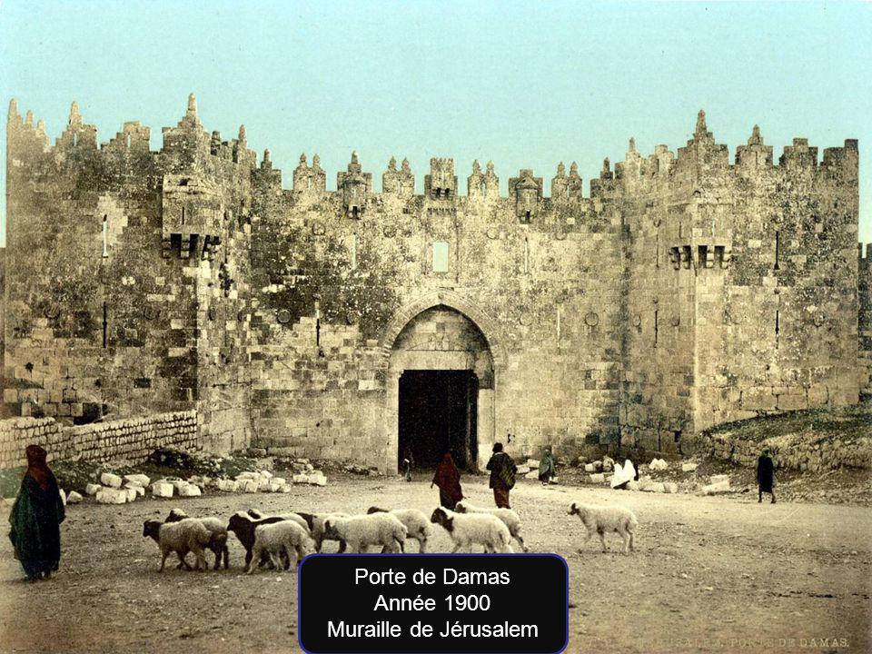 Porte de Damas Année 1900 Muraille de Jérusalem