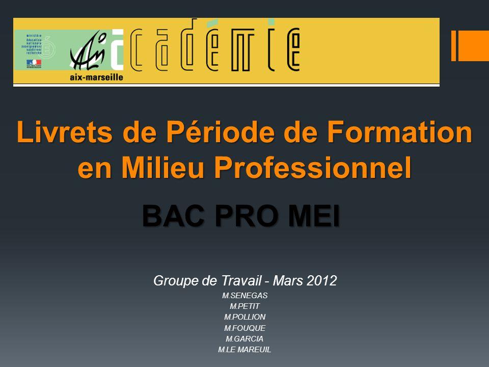Livrets de Période de Formation en Milieu Professionnel BAC PRO MEI Groupe de Travail - Mars 2012 M.SENEGAS M.PETIT M.POLLION M.FOUQUE M.GARCIA M.LE M