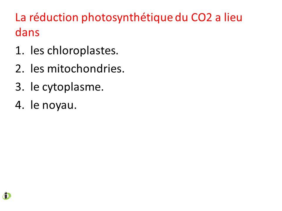 La réduction photosynthétique du CO2 a lieu dans 1. les chloroplastes. 2. les mitochondries. 3. le cytoplasme. 4. le noyau.