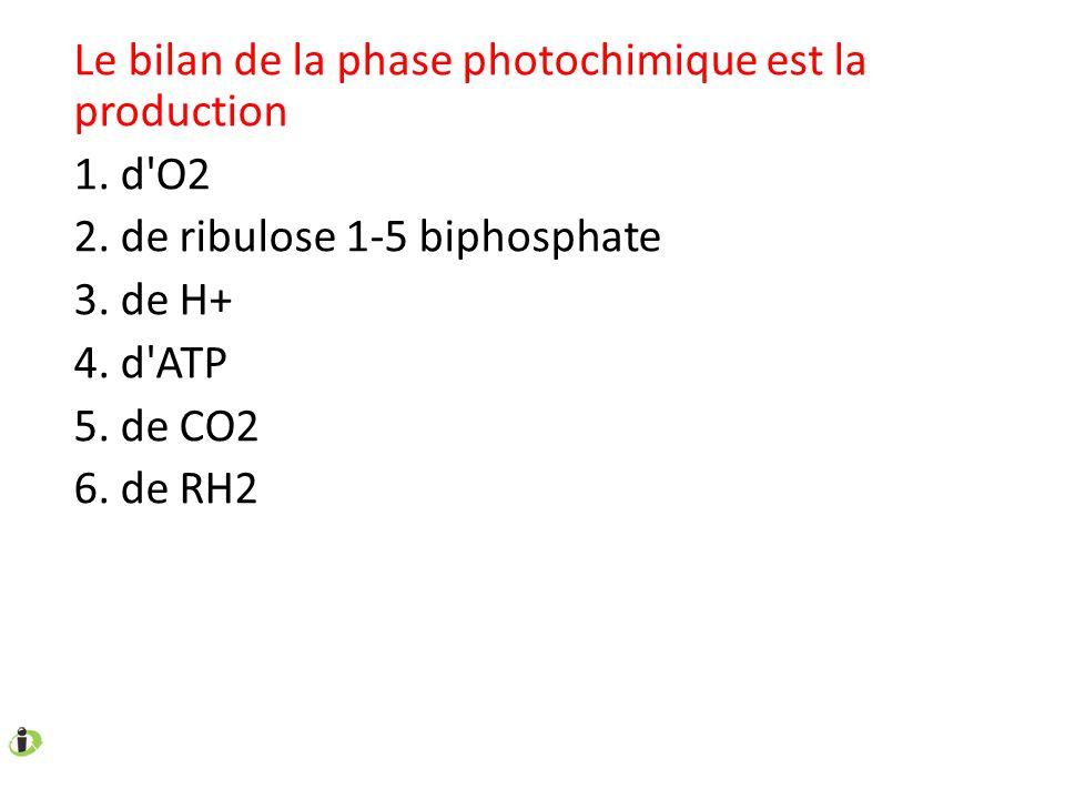 Le bilan de la phase photochimique est la production 1. d'O2 2. de ribulose 1-5 biphosphate 3. de H+ 4. d'ATP 5. de CO2 6. de RH2