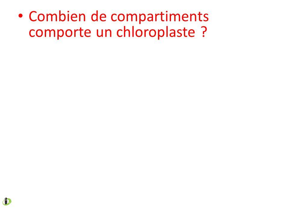 Combien de compartiments comporte un chloroplaste ?