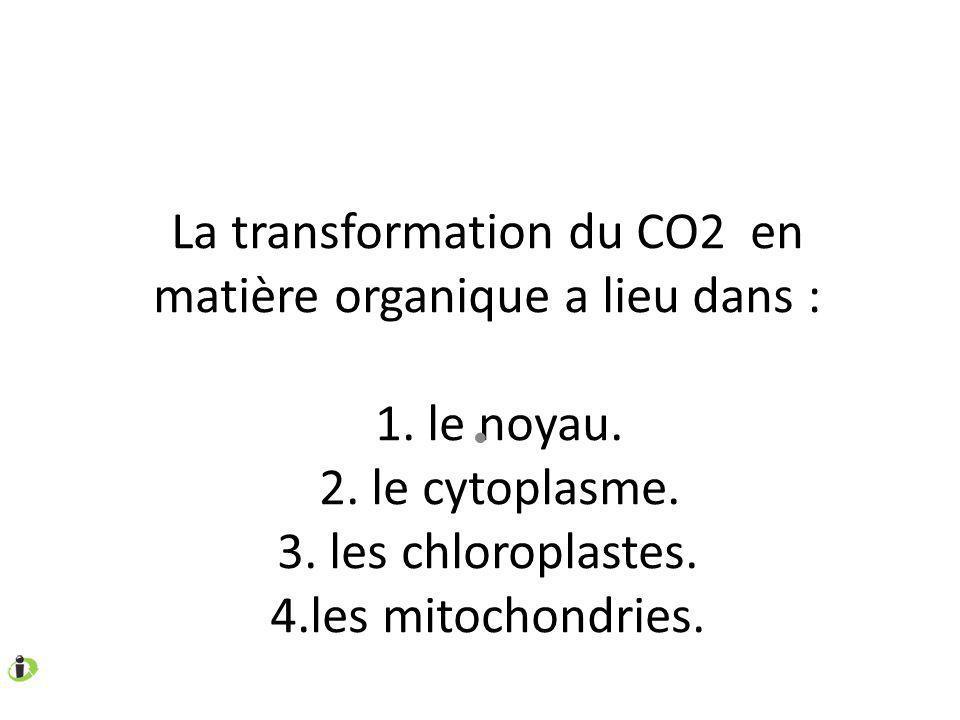 La transformation du CO2 en matière organique a lieu dans : 1. le noyau. 2. le cytoplasme. 3. les chloroplastes. 4.les mitochondries.