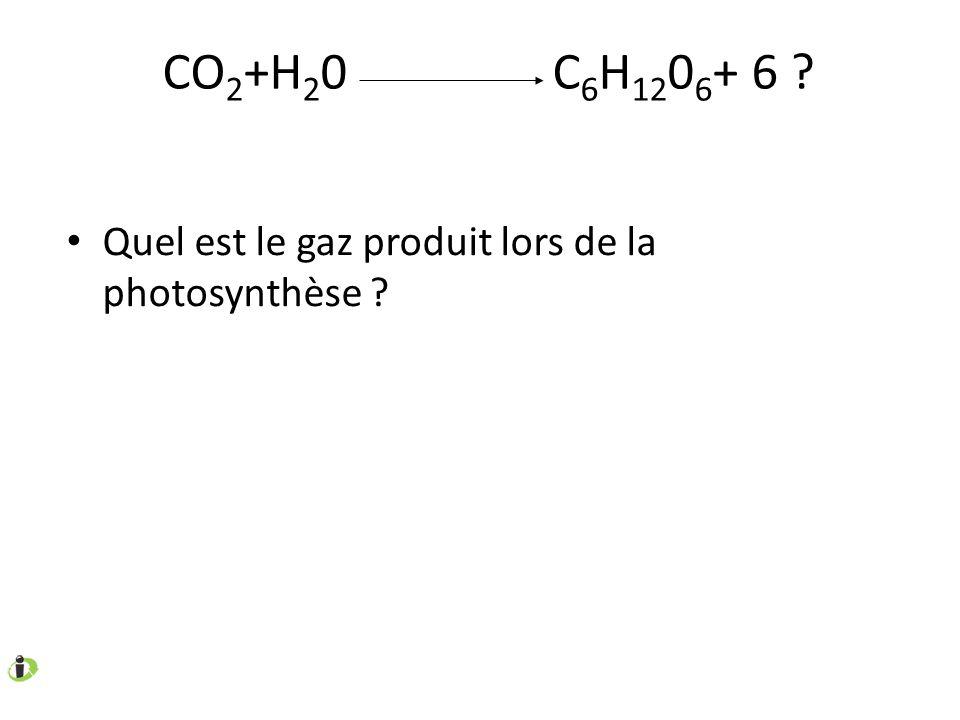 CO 2 +H 2 0 C 6 H 12 0 6 + 6 ? Quel est le gaz produit lors de la photosynthèse ?