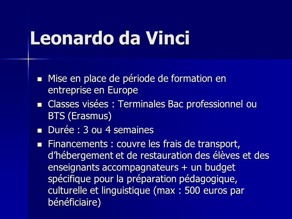 Leonardo da Vinci Mise en place de période de formation en entreprise en Europe Mise en place de période de formation en entreprise en Europe Classes