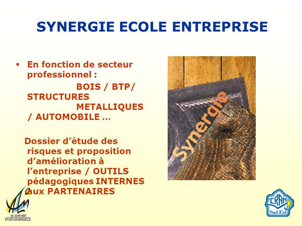 SYNERGIE ECOLE ENTREPRISE En fonction de secteur professionnel : BOIS / BTP/ STRUCTURES METALLIQUES / AUTOMOBILE … Dossier détude des risques et propo