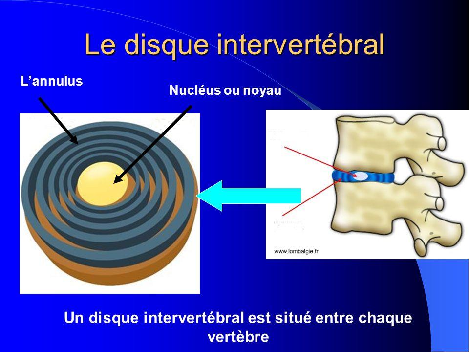 Le disque intervertébral : composition et rôles Le disque intervertébral : composition et rôles Le noyau est constitué dun liquide gélatineux Lannulus est constitué de plusieurs anneaux fibreux qui maintiennent le liquide gélatineux au centre du disque Le disque intervertébral joue un rôle damortisseur et permet la mobilité de la colonne vertébrale