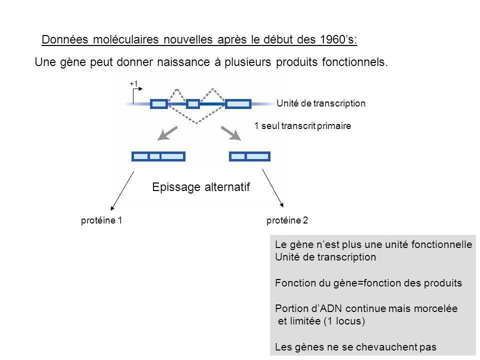 Une gène peut donner naissance à plusieurs produits fonctionnels. Epissage alternatif protéine 1protéine 2 Données moléculaires nouvelles après le déb