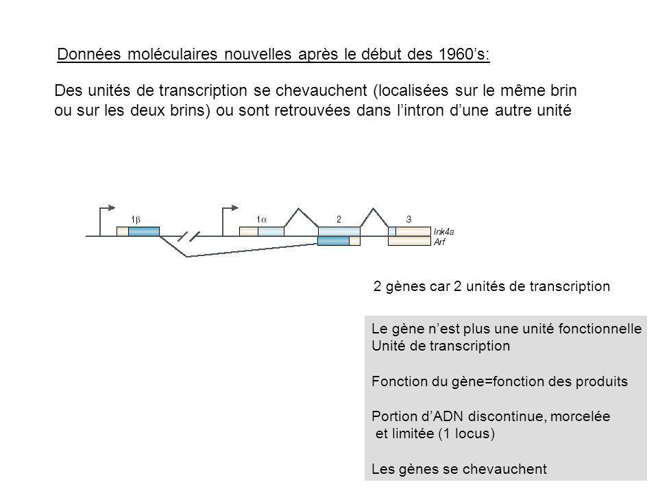 Données moléculaires nouvelles après le début des 1960s: Des unités de transcription se chevauchent (localisées sur le même brin ou sur les deux brins