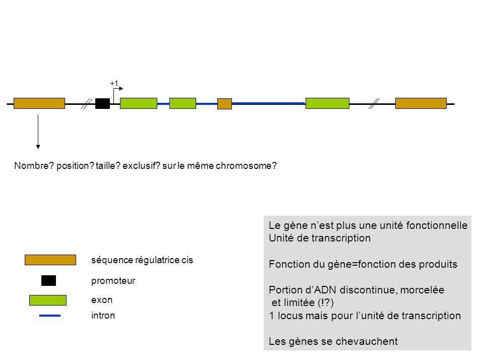 +1 séquence régulatrice cis promoteur exon Nombre? position? taille? exclusif? sur le même chromosome? intron Le gène nest plus une unité fonctionnell
