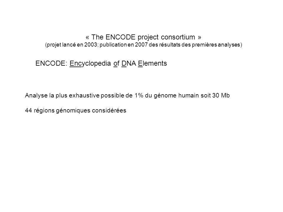 « The ENCODE project consortium » (projet lancé en 2003; publication en 2007 des résultats des premières analyses) ENCODE: Encyclopedia of DNA Element