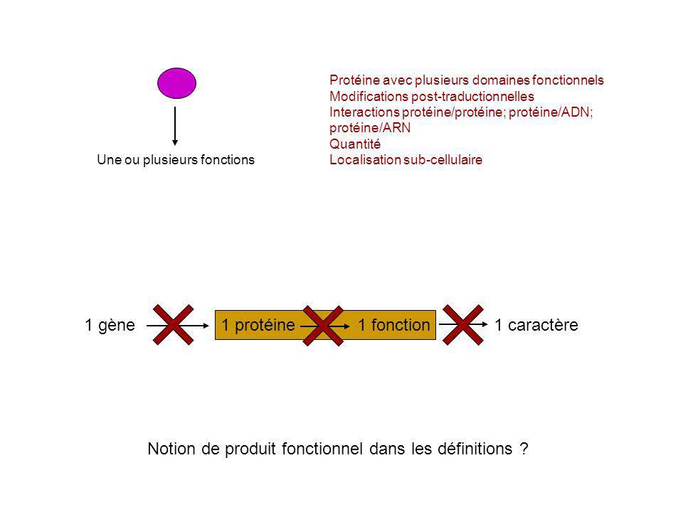 Protéine avec plusieurs domaines fonctionnels Modifications post-traductionnelles Interactions protéine/protéine; protéine/ADN; protéine/ARN Quantité