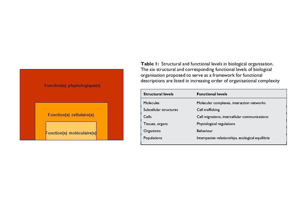 Fonction(s) moléculaire(s) Fonction(s) cellulaire(s) Fonction(s) physiologique(s)