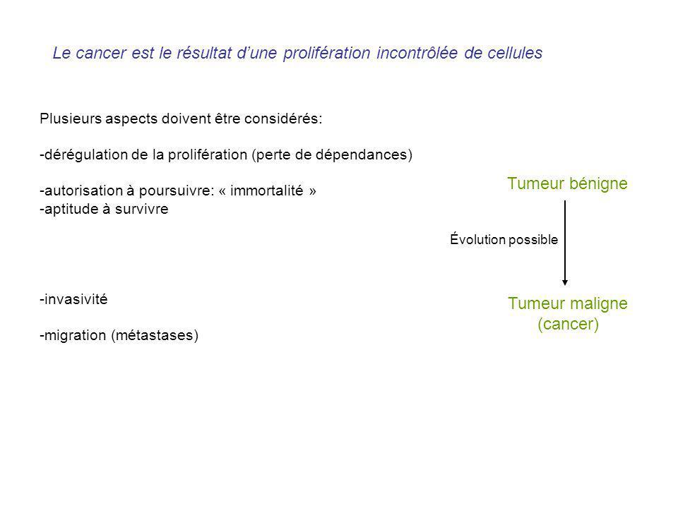 Le cancer est le résultat dune prolifération incontrôlée de cellules Plusieurs aspects doivent être considérés: -dérégulation de la prolifération (per
