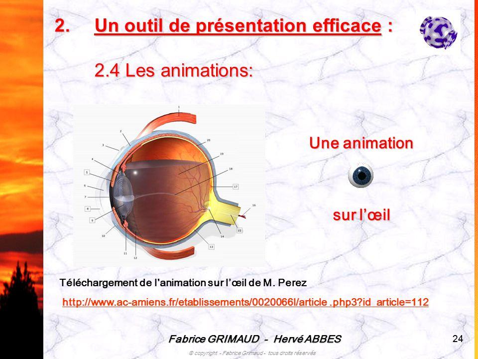 Fabrice GRIMAUD - Hervé ABBES © copyright - Fabrice Grimaud - tous droits réservés 24 Téléchargement de l'animation sur lœil de M. Perez http://www.ac