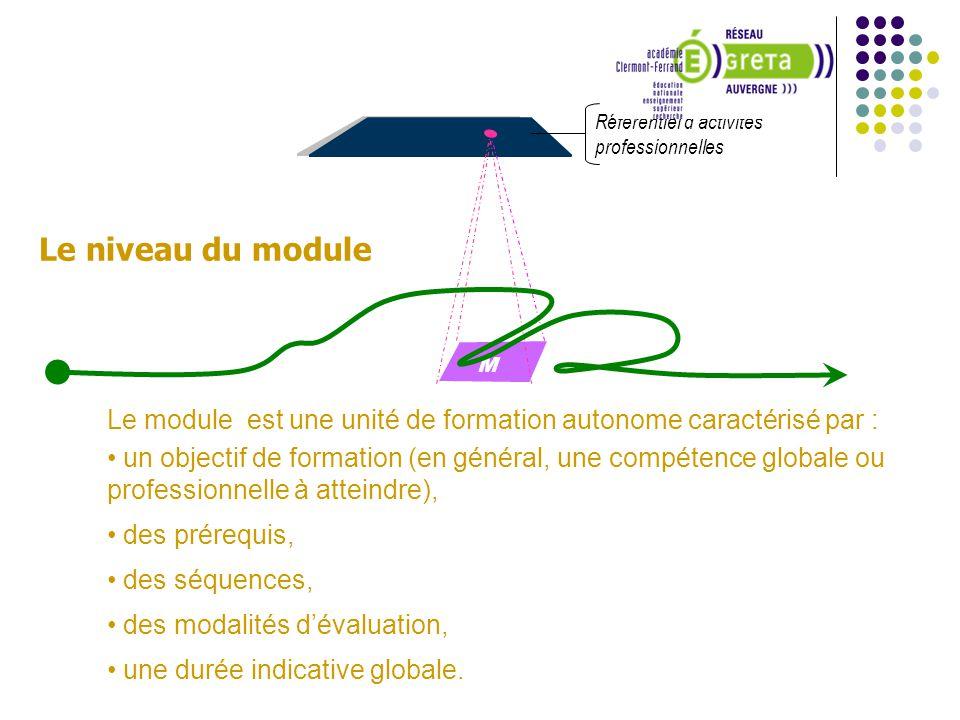 Référentiel dactivités professionnelles M6M6 Le module est une unité de formation autonome caractérisé par : un objectif de formation (en général, une