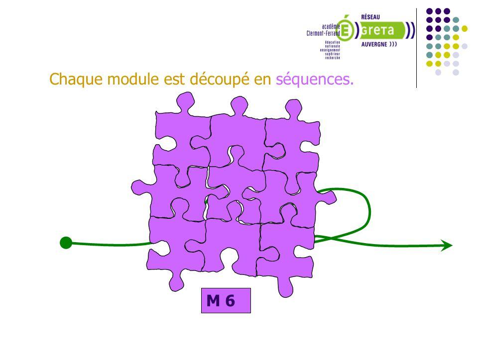 Une séquence est caractérisée par : Des objectifs pédagogiques, Des prérequis, Des connaissances (savoir - savoir faire – savoir être) Une durée indicative M 6 S 1 Le niveau de la séquence